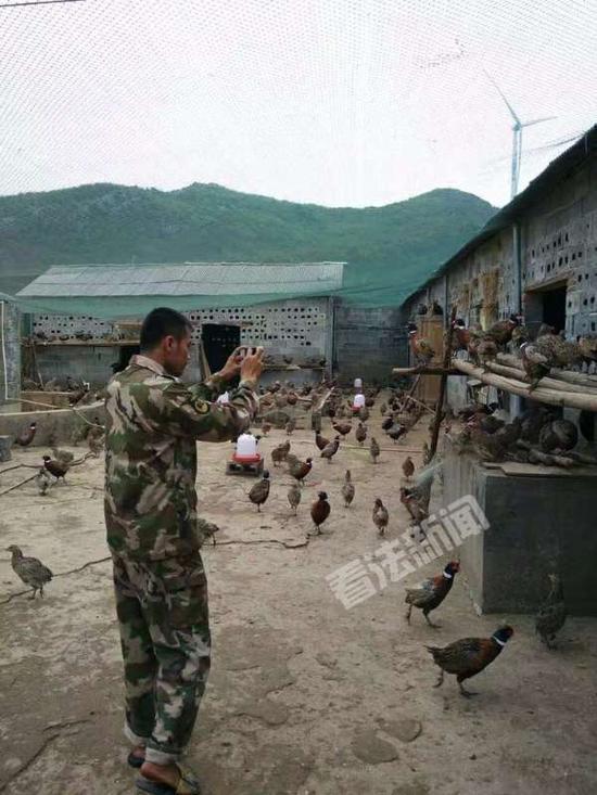 陈磊退伍后回家乡开设农庄帮助乡亲致富。