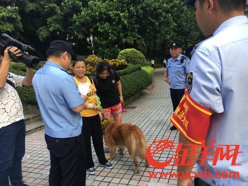 广州警方团结城管等部门开展养犬整治团结执法行动,许多市民自觉为爱犬上牌、牵绳。 本文图片均为金羊网 图