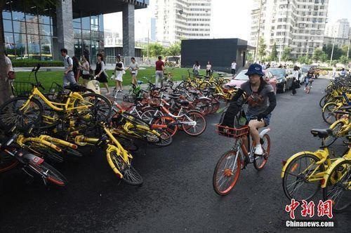 8月3日,北京街头的共享单车。中新社记者 侯宇 摄