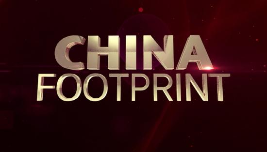 中国方案 人类配合体