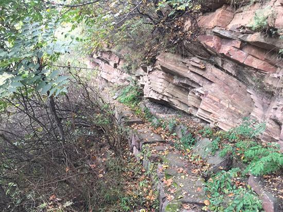 """""""查逃部""""设截的林间小路。于亚妮 图"""