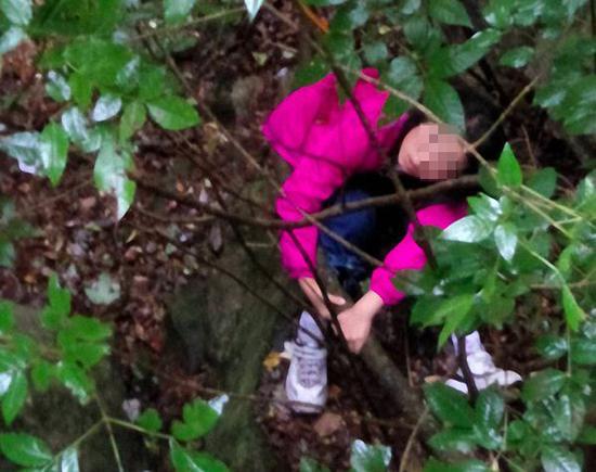 女孩紧紧抓住一颗树干。 本文图均为 黄山风景区管委会 图