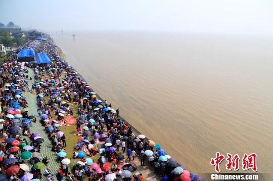 12.5万慕名而来的中外观潮游客翘首等待钱江潮。 王远 摄