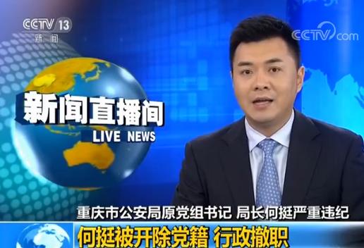 重庆公安局原局长何挺被处分