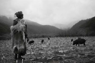 2017北京国际摄影周国内专题展