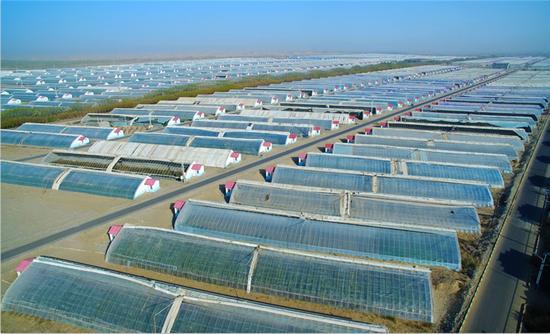 支持建设的和田市团结新村高科技温室大棚供图/北京市支援合作办