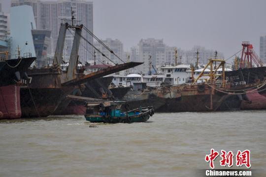 图为海口新港码头一艘渔船正在回港避风。 骆云飞 摄