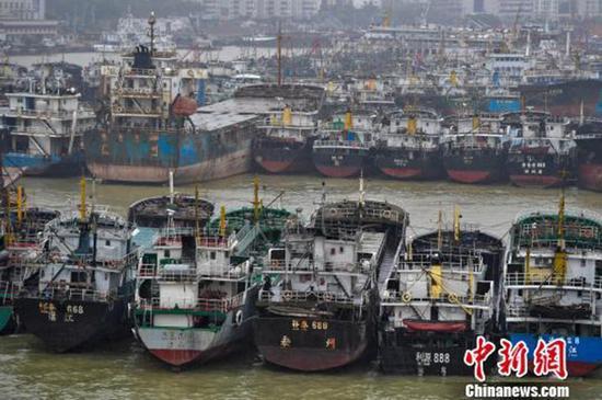 海口新港码头停靠着众多回港避风的船只。  中新网 图
