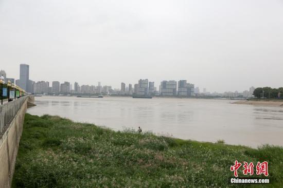 10月10日,汉江武汉龙王庙水域,江水险些与江滩地面持平。连日来,受丹江口水库调理和汉江流域上游降雨影响,汉江武汉段水位迅速上涨。中新社记者 张畅 摄