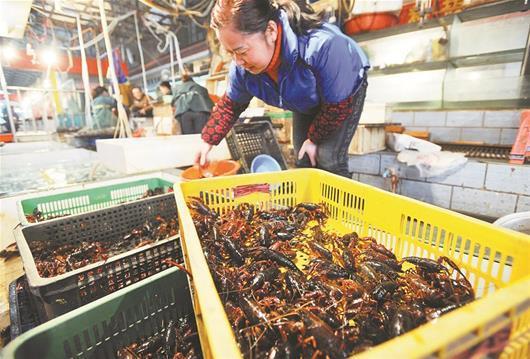 小龙虾已经成为荆楚大地一张新手刺。