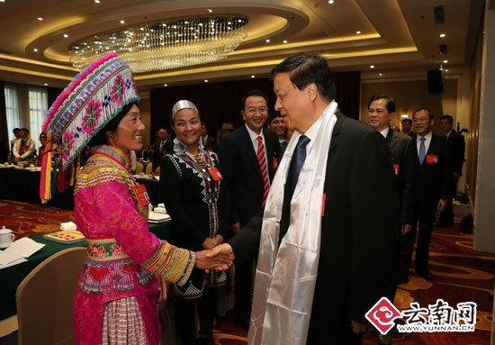 刘云山参加云南代表团讨论 记者雷桐苏/摄