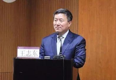 章莹颖案律师王志东