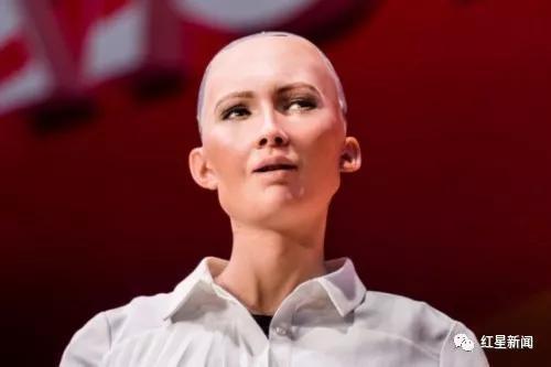 ▲机器人索菲娅。图据网络