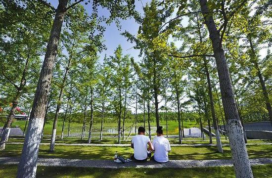 西咸新区沣西新城中心绿廊。 本版图片均为记者 刘强摄