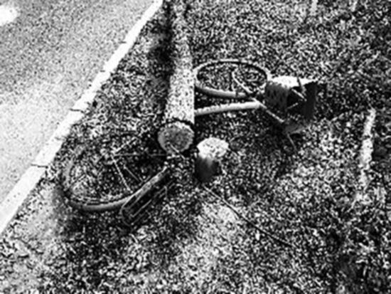 被砍倒的树木压倒了居民的自行车。