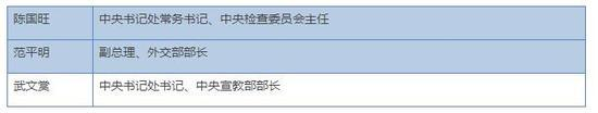 24小时内 越南近8成政治局委员先后露面