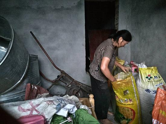 章胜子把收好的玉米放入房间。