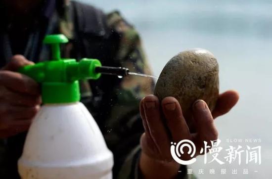 捡到一块石头,罗长国用喷壶洒水,查看上面的花纹
