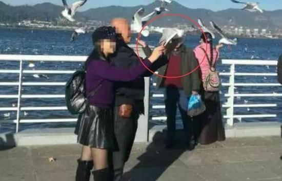 男子昆明抓海鸥拍照被罚625元(图)
