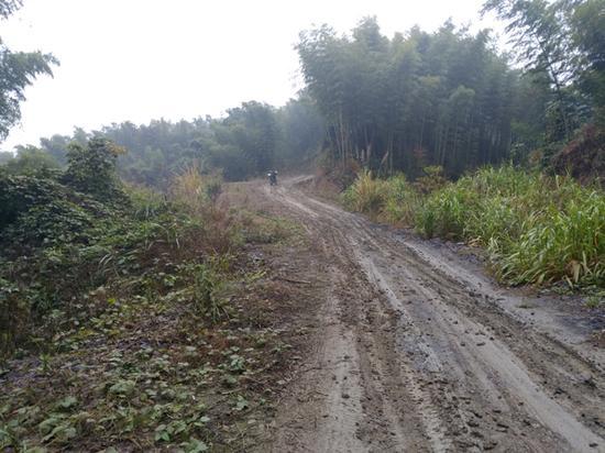 通往5组的山路难行。