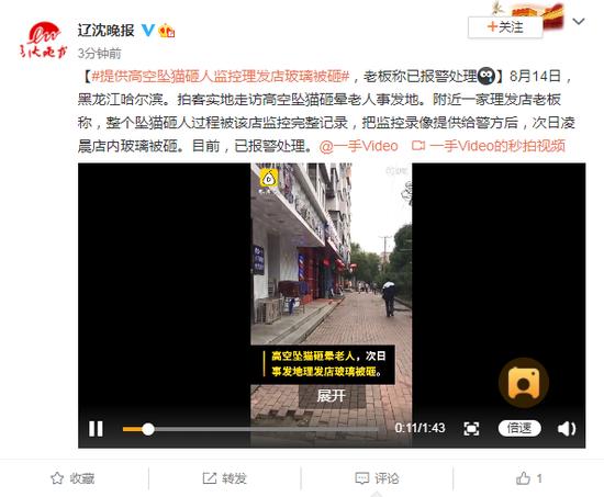 提供高空坠猫砸人监控理发店玻璃被砸 老板:已报警