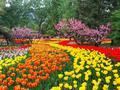 北京市属公园推出46项新春游园活动