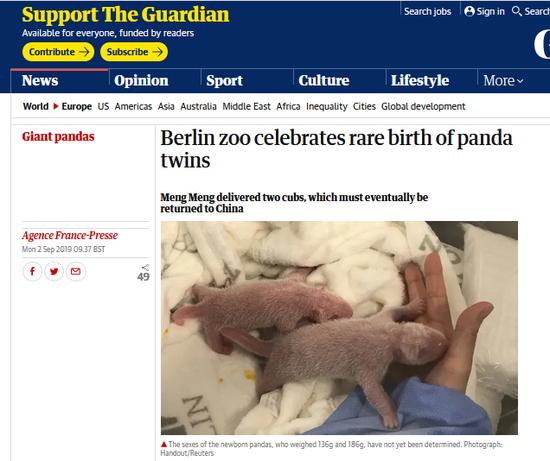 """默克尔访华前 柏林动物园大熊猫""""梦梦""""产双胞胎"""