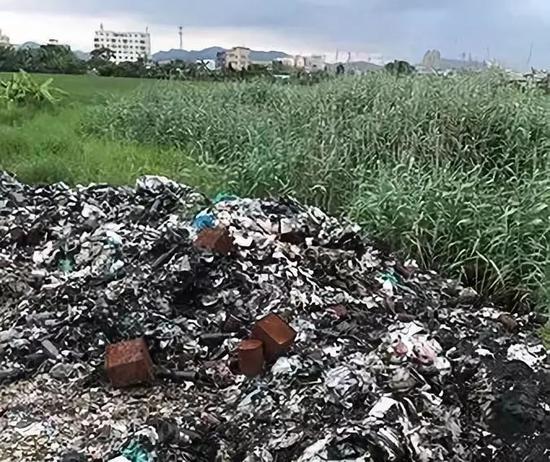 ▲水稻旁边的各种垃圾。 图片来自法制网