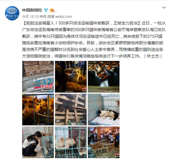 """亚太赌场提现不给 列席党的十九届四中全会归来,王波:""""中国之治""""魅力无穷"""