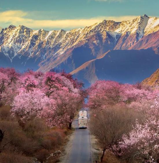 西藏林芝桃花沟之路,摄影师@葛宏军/星球研究所