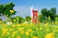 美图:春夏之美尽在其中