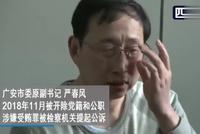 """四川广安市委""""严书记""""被双开 落马视频首次披露"""
