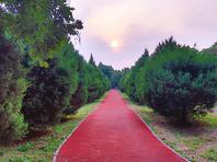 北京这个郊野公园天然去雕饰,正是初秋好去处