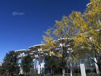 蓝天映衬 2019北京世园会园区景致如画
