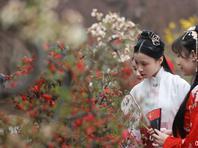 北京陶然亭公园开启踏青赏花游园模式