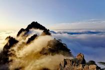 黃山現壯麗云海
