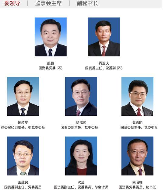 53岁沈莹任国务院国资