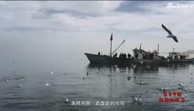 新疆的故事:沙漠中的渔夫