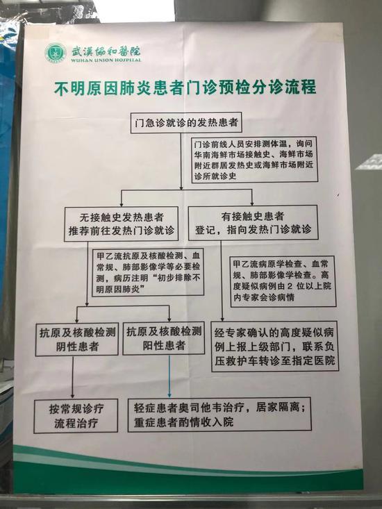 武汉协和医院发热门诊前贴出的分诊流程。新京报记者 向凯 摄