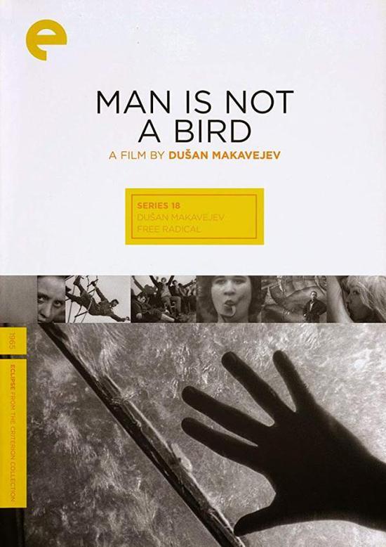《人非鸟》海报