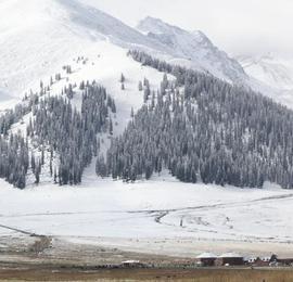 新疆那拉提迎来入秋第一场降雪