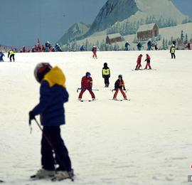 广州:民众滑雪消暑