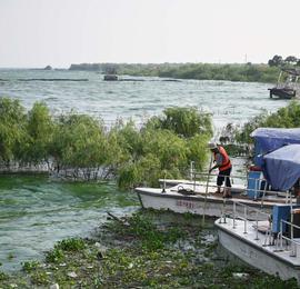 安徽巢湖水域启动蓝藻打捞工作