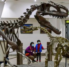 新疆昌吉恐龍館成為假期研學游打卡地