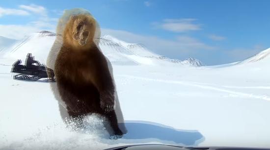 视频:骑手开雪地车猛追野熊 却遭其反手就是一巴掌