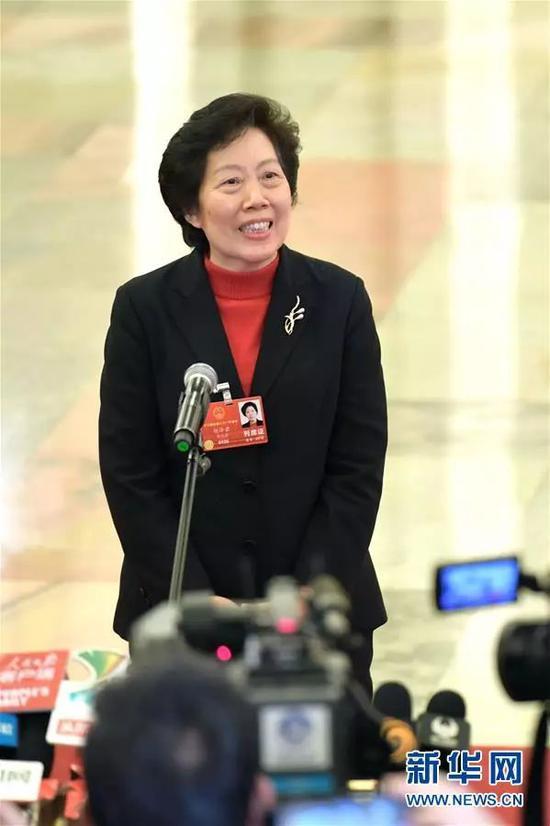 """审计署审计长胡泽君在""""部长通道""""接受采访"""