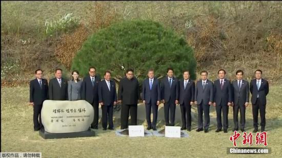 当地时间4月27日,金正恩与文在寅在板门店军事分界线附近共同种下一棵65年树龄的松树。韩朝双方领导人还在植树活动现场合影留念。(电视截图)