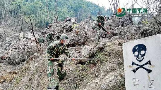 中越边境扫雷作业,是在亚热带山岳丛林地带进行。