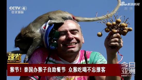 视频|泰国办猴子自助餐节 众猴吃喝不忘撩客