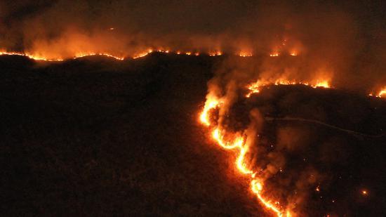 8月17日在巴西托坎廷斯州拍摄的亚马孙雨林中一处燃烧的林区。 本文图片均来自新华社
